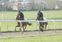 Lady De Vega leading up the Warren Hill gallop