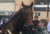 Beautiful boy in the winners enclosure!
