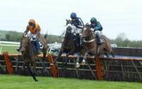 Deux Etoiles jumping the last hurdle at Huntingdon