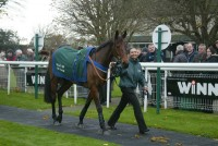 Fruity O'Rooney parades before the Southern National