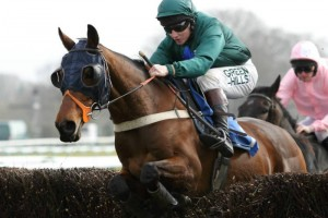Fruity O'Rooney jumps the last fence in front