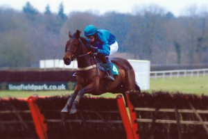 Fruity O'Rooney wins over hurdles under Joshua Moore at Lingfield Park