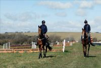 Suzy's gallops are a variety of surfaces and she has her own schooling premises