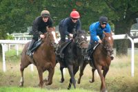 Guns Of Leros (centre) put through his paces on the Gary Moore gallops