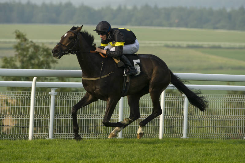 Guns Of Leros cruising to victory under Hector Crouch at Goodwood in August 2016