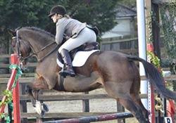 hotsr-racehorse-welfare-deux-etoiles