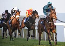 hotsr-racehorse-welfare-the-shuffler