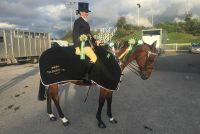 Reserve Champion for ridden novice ROR from National Show qualifier