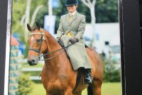 Winning the retrained racehorse challenge at the New Forest Show - his 3rd in succession