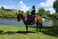 Finishing 2nd in the Side Saddle at Windsor under top producer Lynn Russell