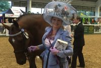 Impy wining the Glamour Stakes and getting a shout out from Jilly Cooper