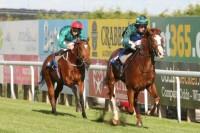 Jupiter Storm wins at Brighton Racecourse under jockey George Baker