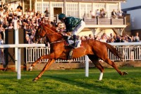 Jupiter Storm wins by eight lengths at Windsor Racecourse