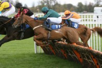 Kashmina and Marc Goldstein jumping well throughout at Taunton