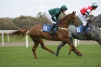 Kashmina makes her move at Taunton Racecourse