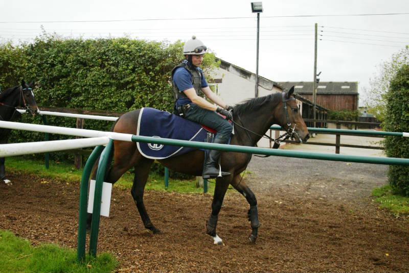 The team at Far Westfield Farm like this filly a great deal!