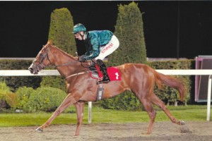 Marmalady wins for the second time