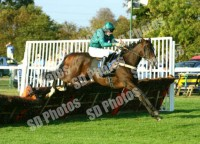 Mohanad wins over hurdles at Huntingdon with Marc Goldstein in the saddle