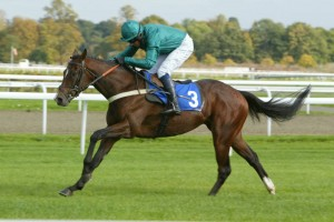 Mohanad wins well at Lingfield Park