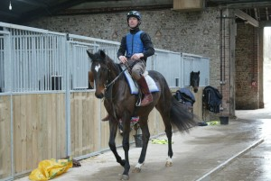 Racehorse trainers - Philip Hide