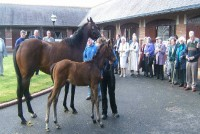 A trip to Kildangan Stud in Ireland proved a huge success with owners
