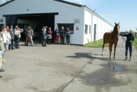 Arriving at the boarding yard where our 2-year old filly has been enjoying a break
