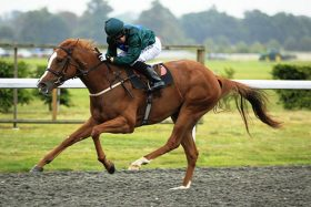 Raven's Lady winning a race worth almost £37,000 as a 2-year old with Marco