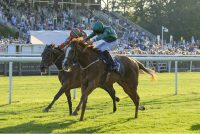 Raven's Lady toughs it out for the 3rd time to win under George Wood, July 2017