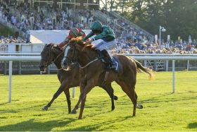 Raven's Lady toughs it out to win at Newmarket