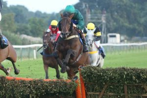 Royal Battalion jumping the last hurdle on the way to his win