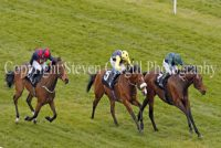 Sir Robert Cheval hits the front at Newbury
