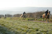 The picturesque gallops that Suzy Smith trains on