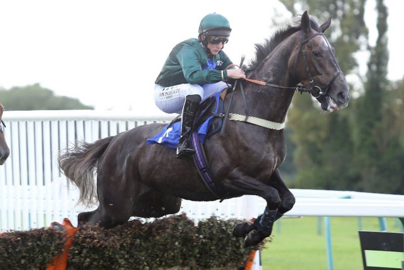 Sisania winning over hurdles first time out