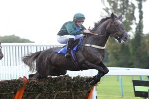Sisania wins on her hurdling debut at Fontwell Park