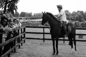 Owners gather as our retired racehorses give a display