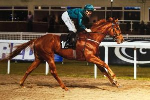 velvet-revolution-wins-at-chelmsford-hotsr