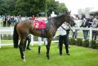 Zambeasy looks in great shape at Sandown Park