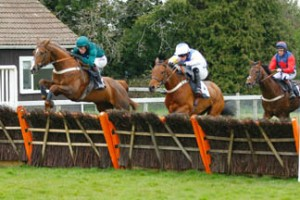 Zante jumping the last and on his way to victory